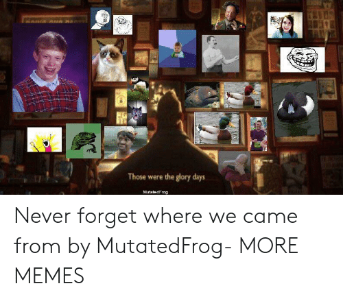 Dank, Memes, and Target: Those were the glory days  MutatedFrog Never forget where we came from by MutatedFrog- MORE MEMES