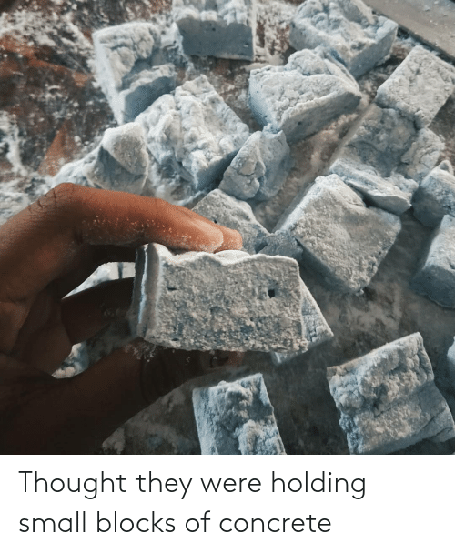 concrete: Thought they were holding small blocks of concrete