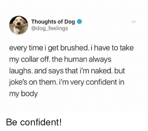 Im Naked: Thoughts of Dog  @dog feelings  every time i get brushed. i have to take  my collar off. the human always  laughs. and says that i'm naked. but  joke's on them. i'm very confident in  my body Be confident!
