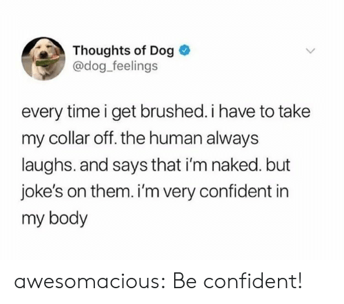 Im Naked: Thoughts of Dog  @dog feelings  every time i get brushed. i have to take  my collar off. the human always  laughs. and says that i'm naked. but  joke's on them. i'm very confident in  my body awesomacious:  Be confident!