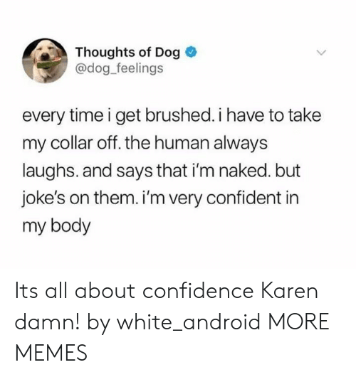 Im Naked: Thoughts of Dog  @dog feelings  every time i get brushed. i have to take  my collar off. the human always  laughs. and says that i'm naked. but  joke's on them. i'm very confident in  my body Its all about confidence Karen damn! by white_android MORE MEMES