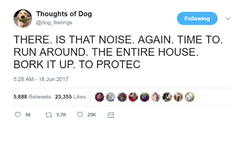Børk: Thoughts of Dog  @dog_feelings  Following  THERE. IS THAT NOISE. AGAIN. TIME TO  RUN AROUND, THE ENTIRE HOUSE  BORK IT UP. TO PROTEC  5:26 AM-16 Jun 2017  5,688 Retweets 23,355 Likes  56  5.7K  23K