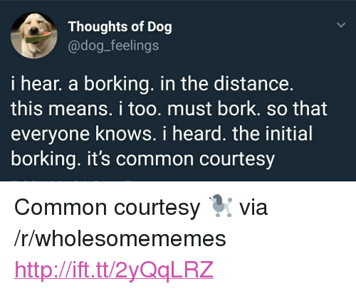 "Borking: Thoughts of Dog  @dog_feelings  i hear, a borking. in the distance.  this means. i too. must bork. so that  everyone knows. i heard. the initial  borking. it's common courtesy <p>Common courtesy 🐩 via /r/wholesomememes <a href=""http://ift.tt/2yQqLRZ"">http://ift.tt/2yQqLRZ</a></p>"