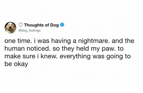 A Nightmare: Thoughts of Dog  @dog feelings  one time. i was having a nightmare. and the  human noticed. so they held my paw. to  make sure i knew. everything was going to  be okay
