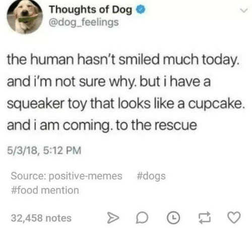 I Am Coming: Thoughts of Dog  @dog feelings  the human hasn't smiled much today.  and i'm not sure why. but i havea  squeaker toy that looks like a cupcake.  and i am coming. to the rescue  5/3/18, 5:12 PM  Source: positive-memes #dogs  #food mention  32,458 notes DF