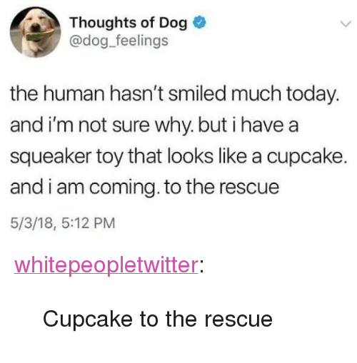 "I Am Coming: Thoughts of Dog  @dog_feelings  the human hasn't smiled much today.  and i'm not sure why. but i have a  squeaker toy that looks like a cupcake.  and i am coming. to the rescue  5/3/18, 5:12 PM <p><a href=""https://whitepeopletwitter.tumblr.com/post/174211515606/cupcake-to-the-rescue"" class=""tumblr_blog"">whitepeopletwitter</a>:</p><blockquote><p>Cupcake to the rescue</p></blockquote>"
