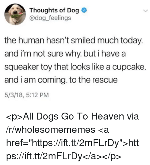 "I Am Coming: Thoughts of Dog  @dog_feelings  the human hasn't smiled much today.  and i'm not sure why. but i have a  squeaker toy that looks like a cupcake.  and i am coming. to the rescue  5/3/18, 5:12 PM <p>All Dogs Go To Heaven via /r/wholesomememes <a href=""https://ift.tt/2mFLrDy"">https://ift.tt/2mFLrDy</a></p>"