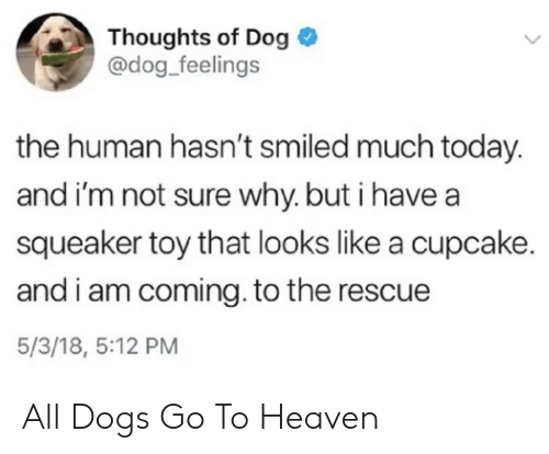 I Am Coming: Thoughts of Dog  @dog_feelings  the human hasn't smiled much today.  and i'm not sure why. but i have a  squeaker toy that looks like a cupcake.  and i am coming. to the rescue  5/3/18, 5:12 PM All Dogs Go To Heaven