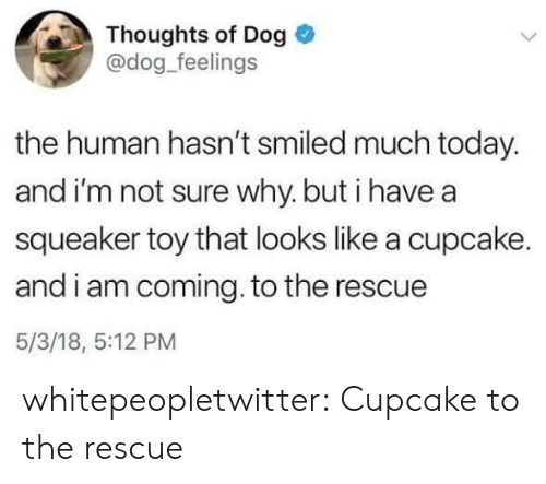 I Am Coming: Thoughts of Dog  @dog_feelings  the human hasn't smiled much today.  and i'm not sure why. but i have a  squeaker toy that looks like a cupcake.  and i am coming. to the rescue  5/3/18, 5:12 PM whitepeopletwitter:  Cupcake to the rescue