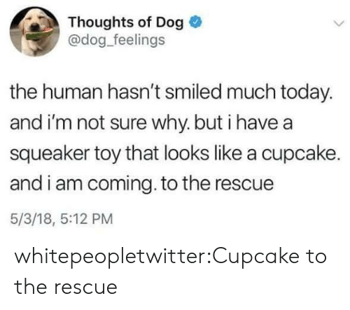 I Am Coming: Thoughts of Dog  @dog_feelings  the human hasn't smiled much today.  and i'm not sure why. but i have a  squeaker toy that looks like a cupcake.  and i am coming. to the rescue  5/3/18, 5:12 PM whitepeopletwitter:Cupcake to the rescue