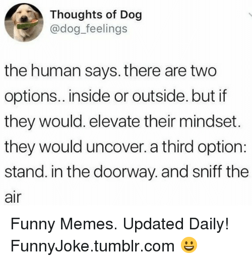 elevate: Thoughts of Dog  @dog_feelings  the human says. there are two  options.. inside or outside. but if  they would. elevate their mindset.  they would uncover. a third option:  stand. in the doorway. and sniff the  air Funny Memes. Updated Daily! ⇢ FunnyJoke.tumblr.com 😀