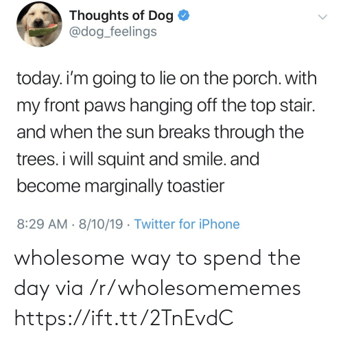 Dog Dog: Thoughts of Dog  @dog_feelings  today. i'm going to lie on the porch. with  my front paws hanging off the top stair.  and when the sun breaks through the  trees. i will squint and smile. and  become marginally toastier  8:29 AM 8/10/19 Twitter for iPhone wholesome way to spend the day via /r/wholesomememes https://ift.tt/2TnEvdC
