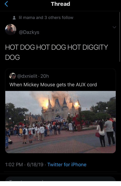 cord: Thread  lil mama and 3 others follow  @Dazkys  HOT DOG HOT DOG HOT DIGGITY  DOG  @dxnielit 20h  When Mickey Mouse gets the AUX cord  1:02 PM 6/18/19 Twitter for iPhone