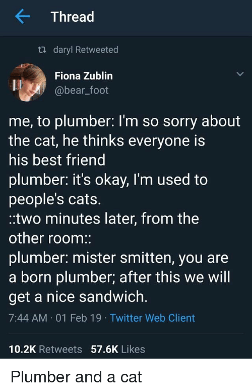 daryl: Thread  ta daryl Retweeted  Fiona Zublin  @bear_foot  me, to plumber: l'm so sorry about  the cat, he thinks everyone is  his best friend  plumber. it's okay, I'm used to  people's cats.  .two minutes later, from the  other room:  plumber: mister smitten, you are  a born plumber; after this we will  get a nice sandwich.  7:44 AM 01 Feb 19 Twitter Web Client  10.2K Retweets 57.6K Likes Plumber and a cat