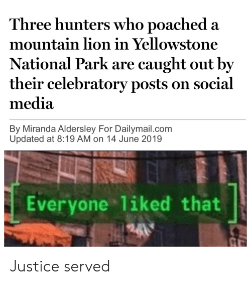 Reddit, Social Media, and Justice: Three hunters who poached a  mountain lion in Yellowstone  National Park are caught out by  their celebratory posts on social  media  By Miranda Aldersley For Dailymail.com  Updated at 8:19 AM on 14 June 2019  Everyone liked that Justice served