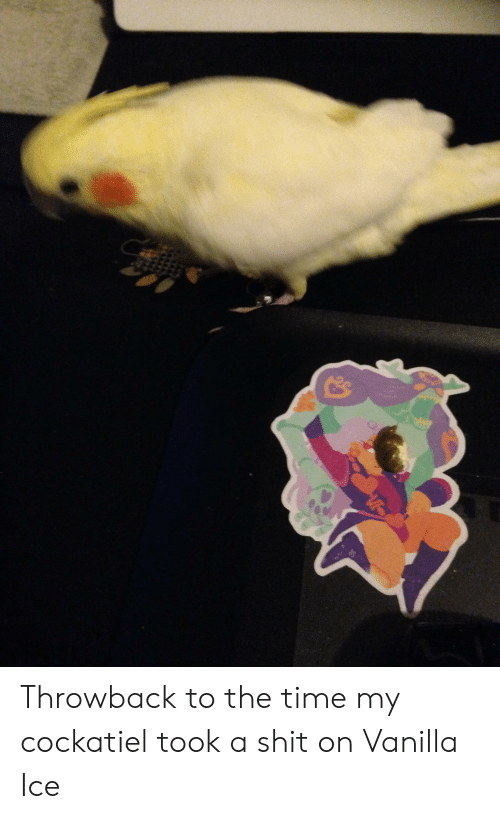 Shit, Vanilla Ice, and Time: Throwback to the time my cockatiel took a shit on Vanilla Ice