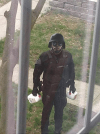 I Am The Milkman My Milk Is Delicious