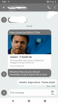 Shaggy It Wasnt
