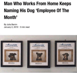 Who Works