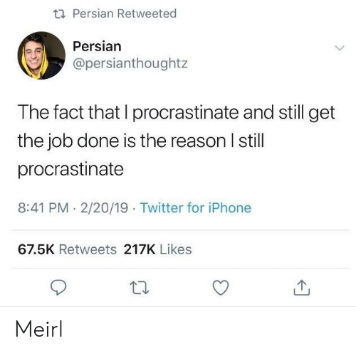 Persian: ti Persian Retweeted  Persian  @persianthoughtz  The fact that I procrastinate and still get  the job done is the reason I still  procrastinate  8:41 PM. 2/20/19 Twitter for iPhone  67.5K Retweets 217K Likes Meirl