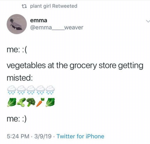 Iphone, Twitter, and Girl: ti plant girl Retweeted  emma  @emma weaver  me:  vegetables at the grocery store getting  misted:  me::  5:24 PM 3/9/19 Twitter for iPhone