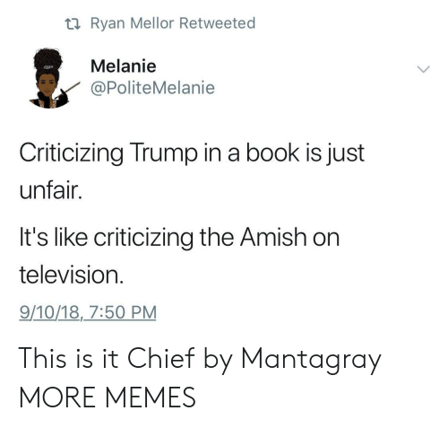 amish: ti Ryan Mellor Retweeted  Melanie  PoliteMelanie  Criticizing Trump in a book is just  unfair.  It's like criticizing the Amish on  television  9/10/18,7:50 PM This is it Chief by Mantagray MORE MEMES
