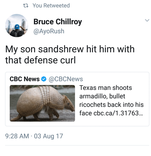 News, Texas, and Back: ti You Retweeted  Bruce Chillroy  @AyoRush  My son sandshrew hit him with  that defense curl  CBC News Ф @CBCNews  Texas man shoots  armadillo, bullet  ricochets back into his  face cbc.ca/1.31763...  9:28 AM 03 Aug 17