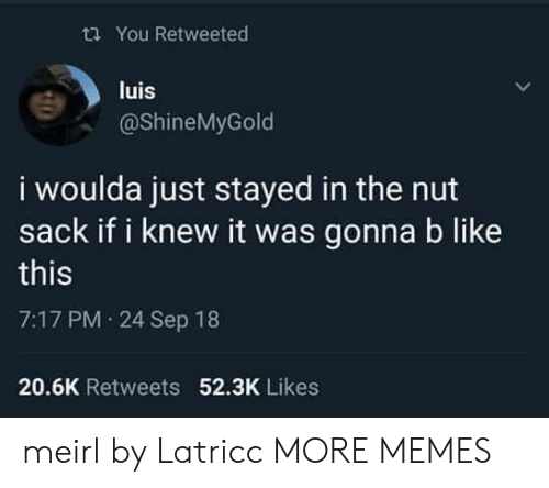 Dank, Memes, and Target: ti You Retweeted  luis  @ShineMyGold  i woulda just stayed in the nut  sack if i knew it was gonna b like  this  7:17 PM 24 Sep 18  52.3K Likes  20.6K Retweets meirl by Latricc MORE MEMES