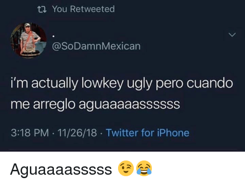 Iphone, Memes, and Twitter: ti You Retweeted  @SoDamnMexican  i'm actually lowkey ugly pero cuando  me arreglo aguaaaaassssss  3:18 PM . 11/26/18 Twitter for iPhone Aguaaaasssss 😉😂