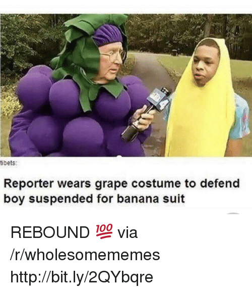 rebound: tibets:  Reporter wears grape costume to defend  boy suspended for banana suit REBOUND 💯 via /r/wholesomememes http://bit.ly/2QYbqre