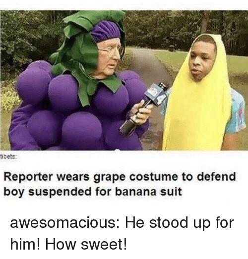 Tumblr, Banana, and Blog: tibets:  Reporter wears grape costume to defend  boy suspended for banana suit awesomacious:  He stood up for him! How sweet!