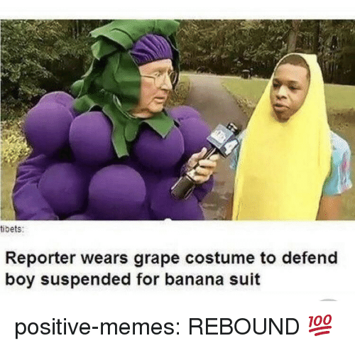 rebound: tibets:  Reporter wears grape costume to defend  boy suspended for banana suit positive-memes:  REBOUND 💯