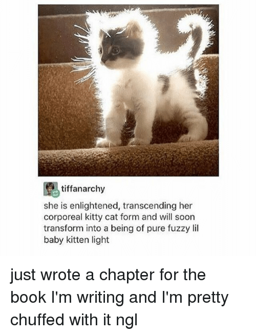 Lil Baby: tiffanarchy  she is enlightened, transcending her  corporeal kitty cat form and will soon  transform into a being of pure fuzzy lil  baby kitten light just wrote a chapter for the book I'm writing and I'm pretty chuffed with it ngl