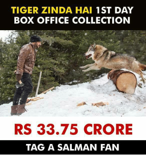 salman: TIGER ZINDA HAI 1ST DAY  BOX OFFICE COLLECTION  RS 33.75 CRORE  TAG A SALMAN FAN