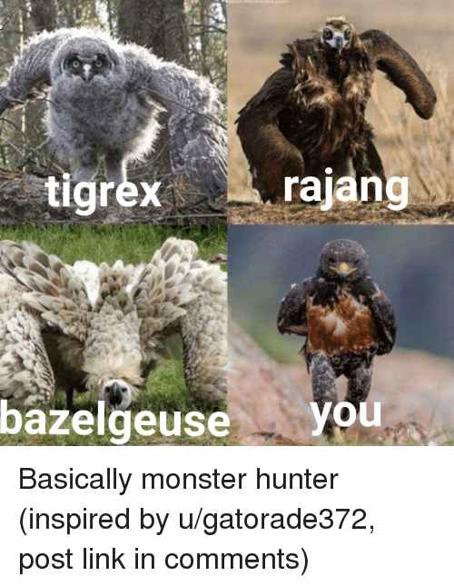 Tigrexrajang Bazelgeuse You Monster Meme On Astrologymemes Com