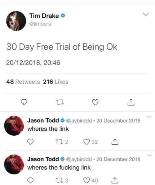 Drake, Fucking, and Free: Tim Drake  @timbers  30 Day Free Trial of Being Ok  20/12/2018, 20:46  48 Retweets 216 Likes  Jason Todd @jaybirddd 20 December 2018  wheres the link  Jason Todd @jaybirddd 20 December 2018  wheres the fucking link