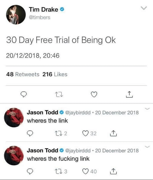 Drake, Fucking, and Free: Tim Drake  @timbers  30 Day Free Trial of Being Ok  20/12/2018, 20:46  48 Retweets 216 Likes  Jason Todd @jaybirddd . 20 December 2018  wheres the link  Jason Todd e. @jaybirddd-20 December 2018  wheres the fucking link  40