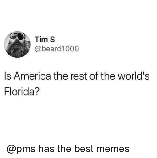 America, Memes, and Best: Tim S  @beard1000  Is America the rest of the world's  Florida? @pms has the best memes
