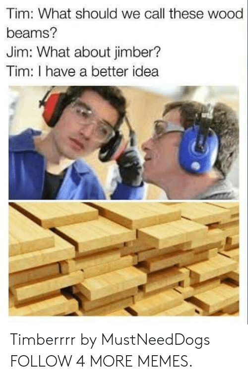 Better Idea: Tim: What should we call these wood  beams?  Jim: What about jimber?  Tim: I have a better idea Timberrrr by MustNeedDogs FOLLOW 4 MORE MEMES.