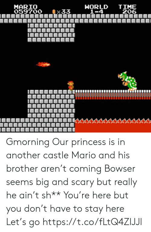 Bowser, Memes, and Mario: TIME  206  MARIO  059700  WORLD  _1-4  33 Gmorning  Our princess is in another castle Mario and his brother aren't coming Bowser seems big and scary but really he ain't sh** You're here but you don't have to stay here Let's go https://t.co/fLtQ4ZlJJl