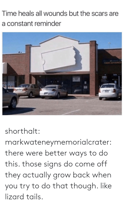 Try: Time heals all wounds but the scars are  a constant reminder  SYRMT A  CASH ADVANCE  17.0 shorthalt: markwateneymemorialcrater:  there were better ways to do this. those signs do come off   they actually grow back when you try to do that though. like lizard tails.