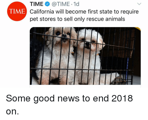 Animals, Memes, and News: TIME @TIME 1d  California will become first state to require  pet stores to sell only rescue animals  TIME Some good news to end 2018 on.