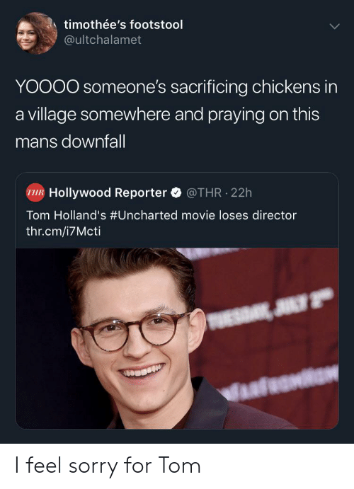 Chickens: timothée's footstool  @ultchalamet  YOOOO someone's sacrificing chickens in  a village somewhere and praying on this  mans downfall  Hollywood Reporter  @THR 22h  Tom Holland's #Uncharted movie loses director  thr.cm/i7Mcti  JULY 2 I feel sorry for Tom