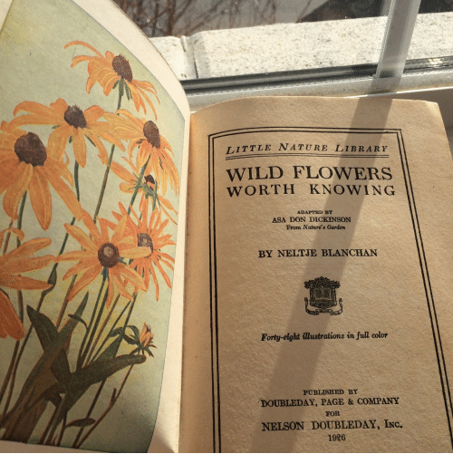 Dickinson: TITTLE NATURE LIBRARY  WILD FLOWERS  WORTH KNOWING  ADAPTED BY  ASA DON DICKINSON  From Nature's Garden  BY NELTJE BLANCHAN  Forty-eight ilustrations in full color  PUBLISHED BY  DOUBLEDAY, PAGE & COMPANY  FOR  NELSON DOUBLEDAY, INc.  1926