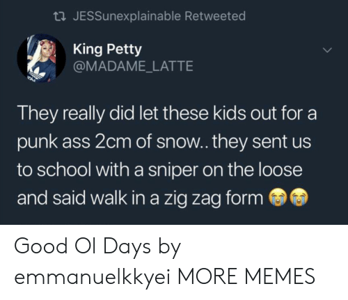 Ass, Dank, and Memes: tl JESSunexplainable Retweeted  King Petty  @MADAME_LATTE  They really did let these kids out for a  punk ass 2cm of snow.. they sent us  to school with a sniper on the loose  and said walk in a zig zag form Good Ol Days by emmanuelkkyei MORE MEMES