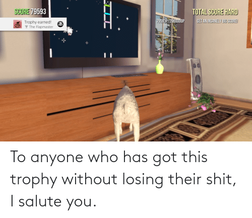 I Salute You: To anyone who has got this trophy without losing their shit, I salute you.