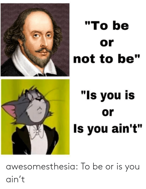 """Tumblr, Blog, and Com: """"To be  or  not to be""""  """"Is you is  or  Is you ain't"""" awesomesthesia:  To be or is you ain't"""