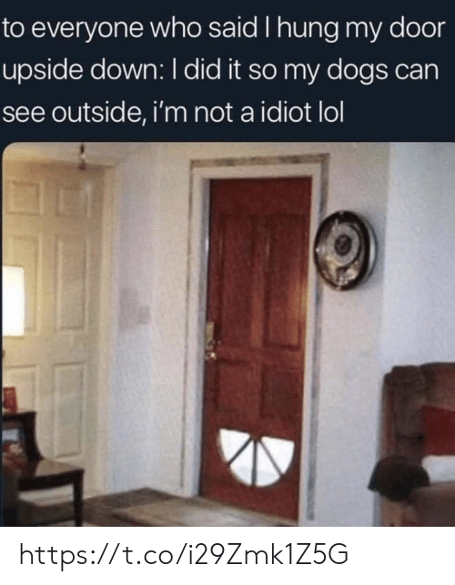 Im Not A: to everyone who said I hung my door  upside down: I did it so my dogs can  see outside, i'm not a idiot lol https://t.co/i29Zmk1Z5G