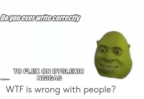Wtf Is Wrong: TO FLEX ON DYSLEXIC  NGIGAS  imgfip.com WTF is wrong with people?