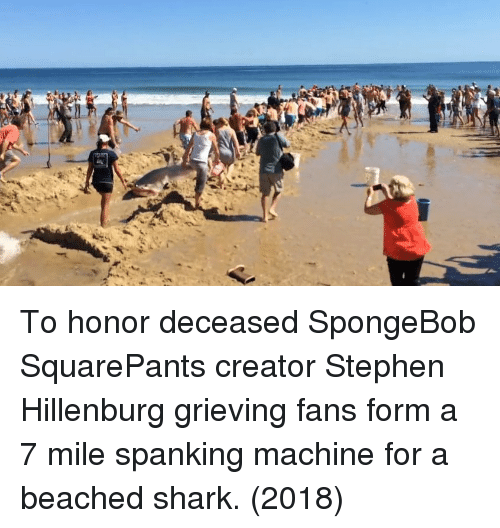 beached: To honor deceased SpongeBob SquarePants creator Stephen Hillenburg grieving fans form a 7 mile spanking machine for a beached shark. (2018)